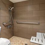 accessible bathroom with toilet, roll-in shower, grab bars and shower seat